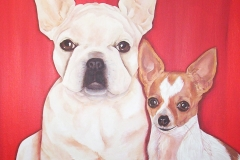 French Bulldog & Chihuahua