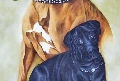 Bull Mastiff painting