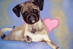 Pug Puppy Pet Portrait