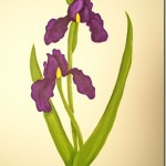 How to Paint Purple Iris