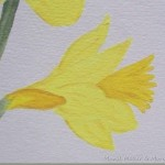 Paint Daffodils Tutorial