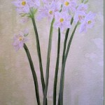 paint paperwhite narcissus