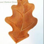 paint-simple-oak-leaf