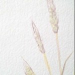 How to Paint Wheat