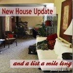 My New House Update