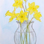 How To Paint Daffodils
