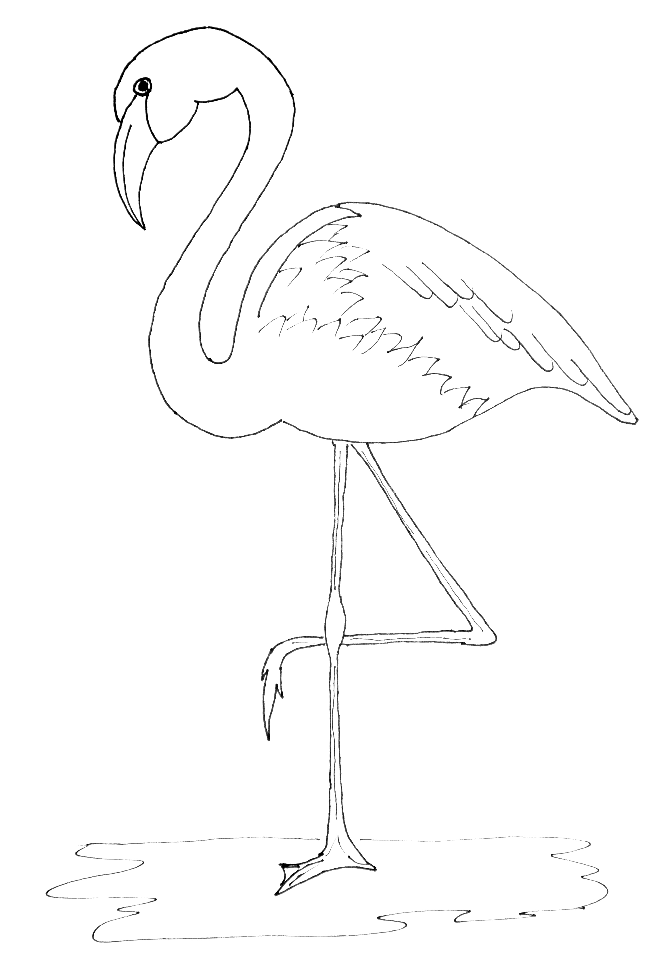 Tactueux image with regard to printable flamingo template
