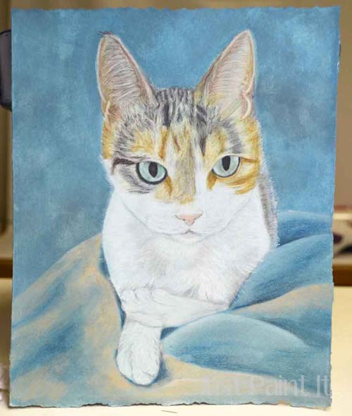 cat portrait with pencils
