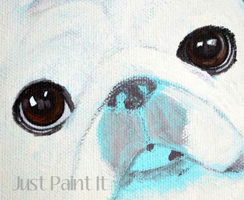 Paint Dog Eyes M