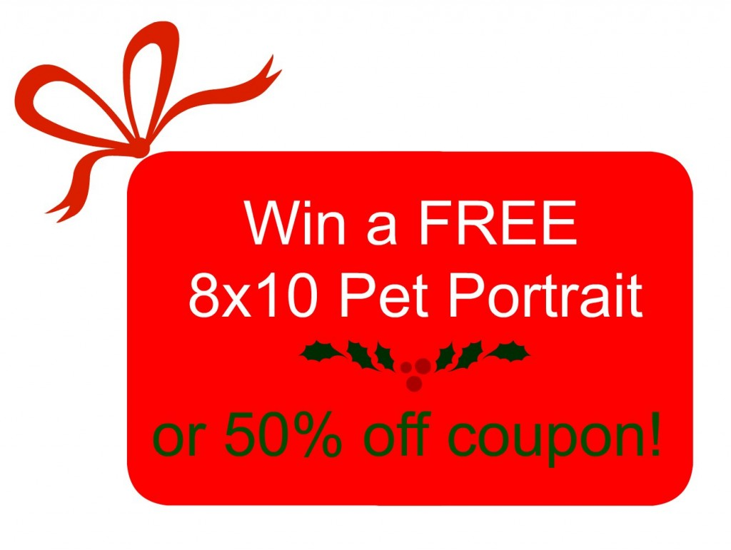 Free pet portrait