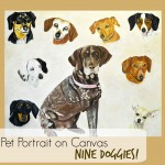 Pet Portrait of 9 dogs