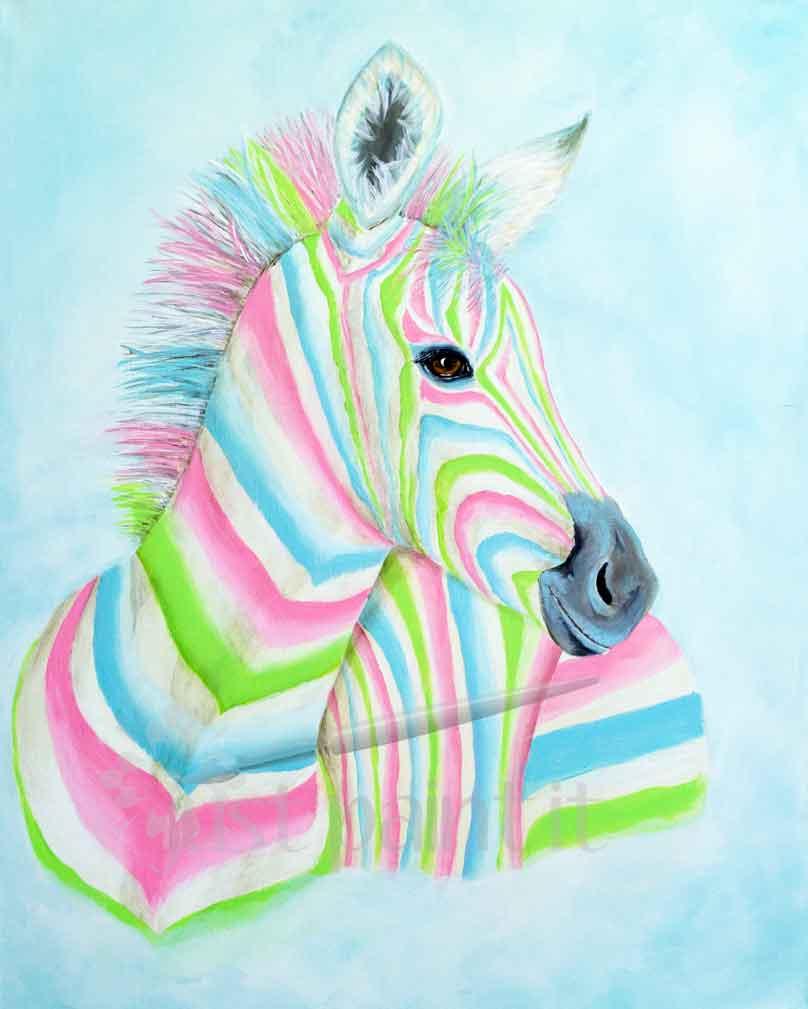 Colorful-Zebra