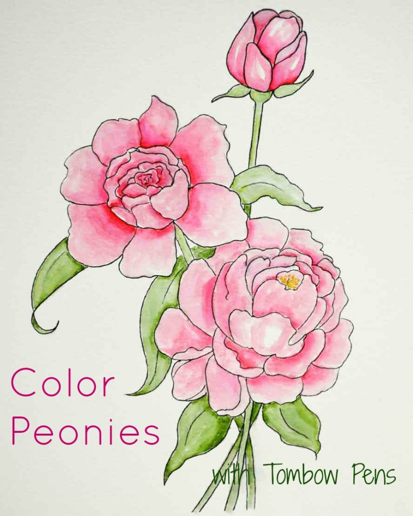 Peony-Coloring-Page