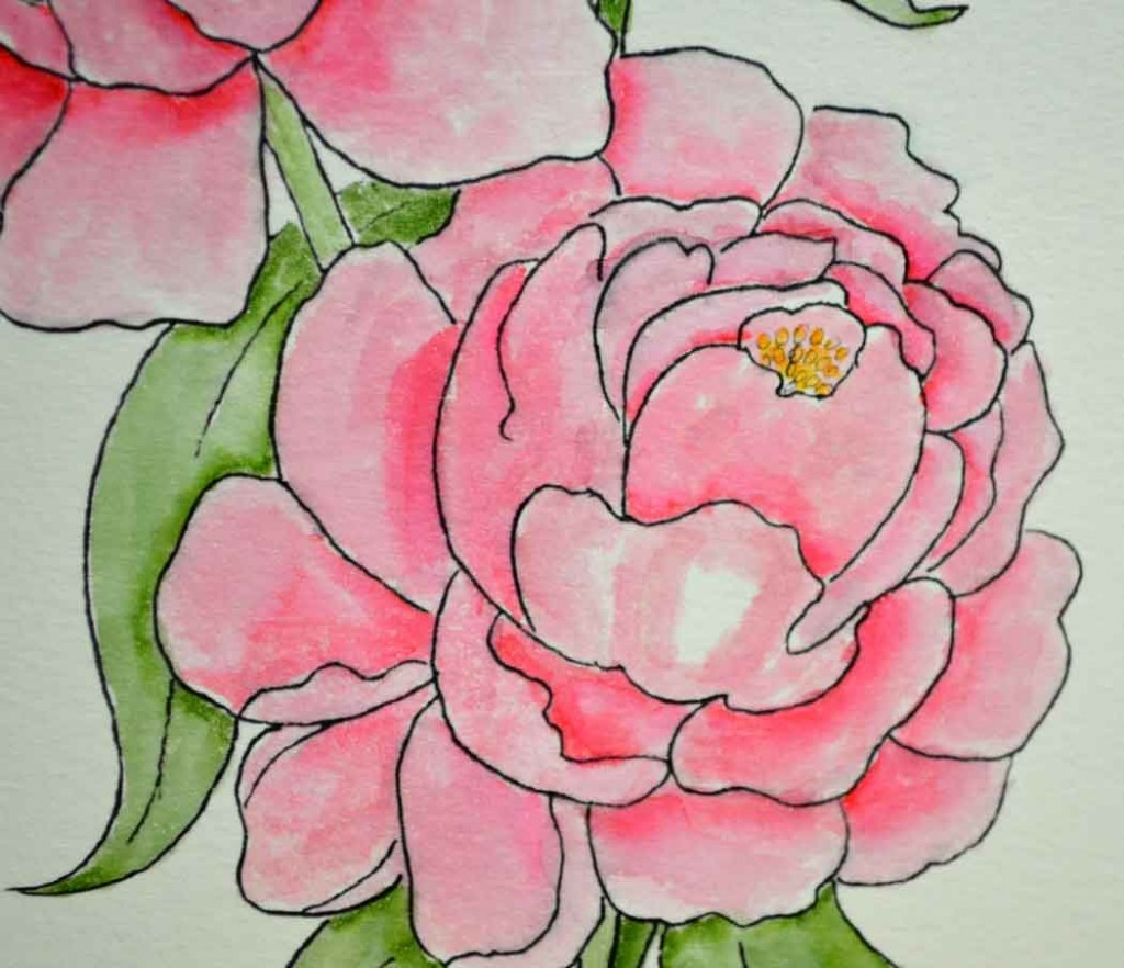 coloring peonies with tombow dual brush pens