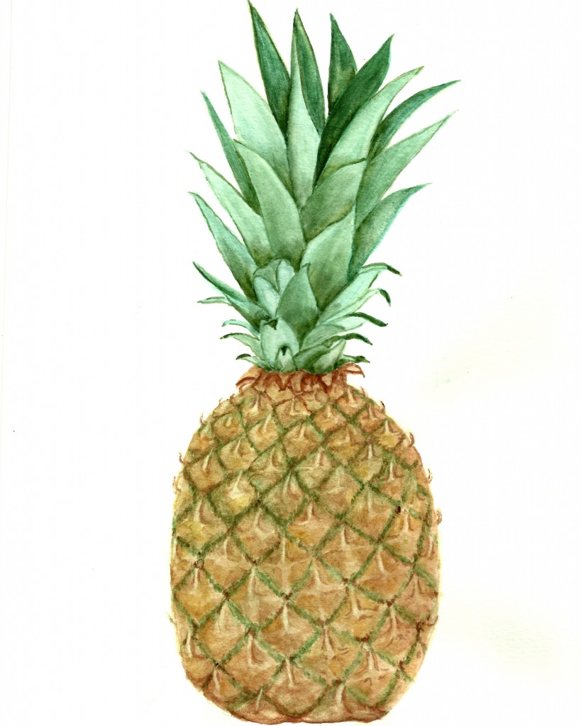 pineapple-watercolor-printable