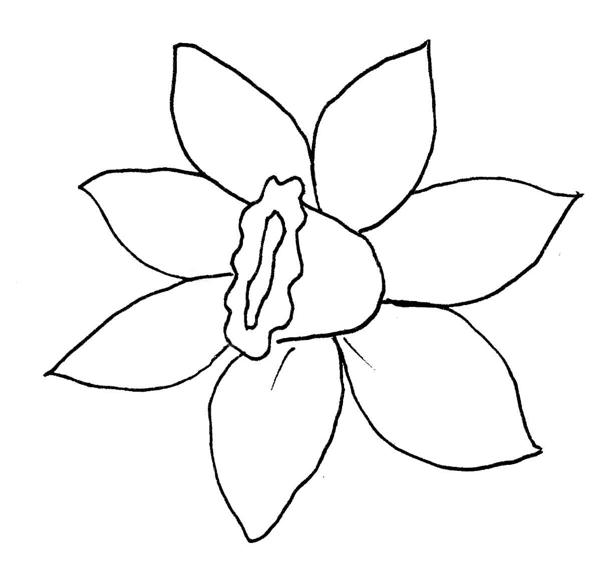 Daffodil template printable the image for Template of a daffodil