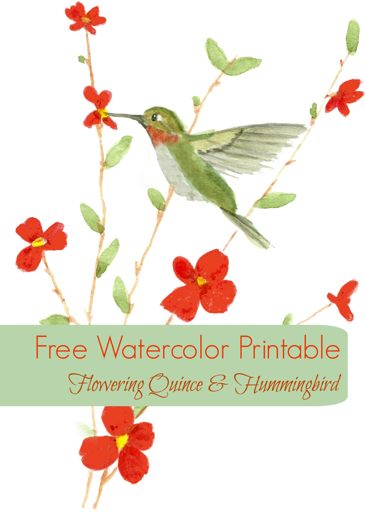 Free Watercolor Printable Card