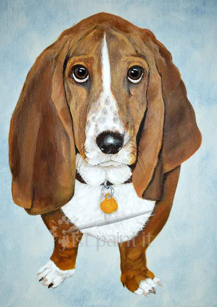 Pet Portrait 16 x 20