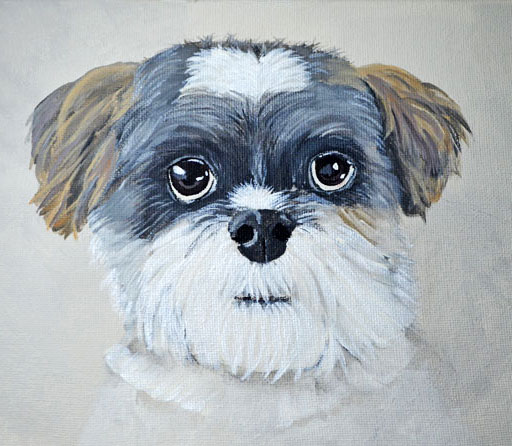 pet-portrait