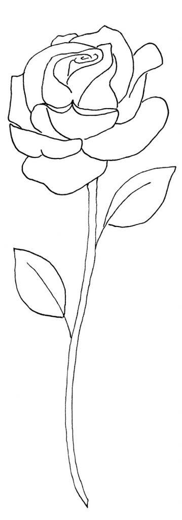 rose-pattern