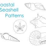 coastal-seashell-patterns