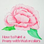 How to Paint a Peony with Watercolors – Video