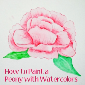 How to Paint a Peony with Watercolors - Video