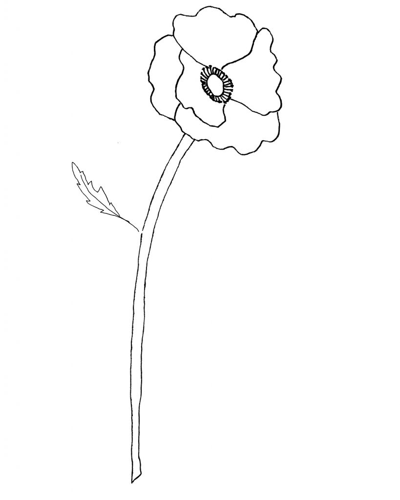 poppy-pattern