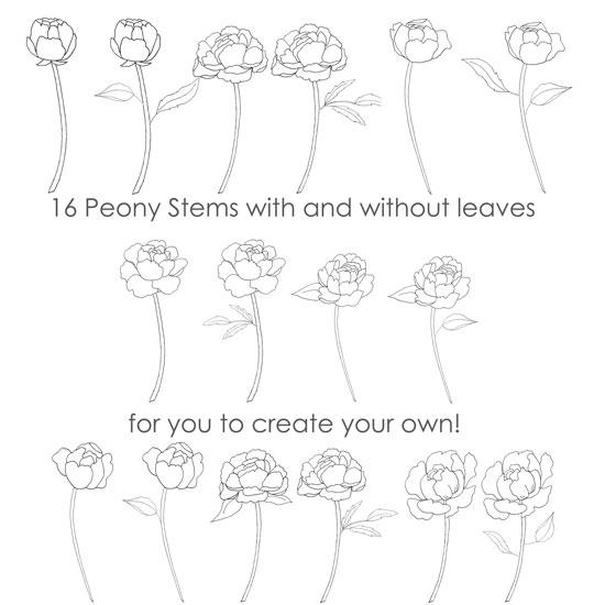 peony-patterns