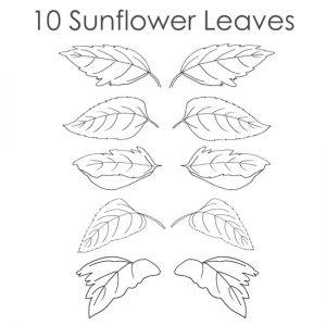 sunflower-patterns