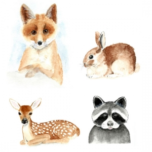 Watercolor Baby Animals