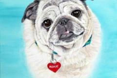 Pug Pet Portrait