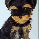 Yorkie Puppy Illustration