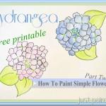 Hydrangea Patterns