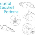 coastal-seashell-patterns